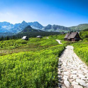Szlak w Zakopanem